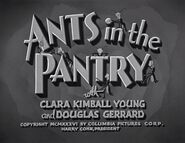 Ants in the Pantry