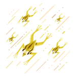 Rain of Frogs (old).png