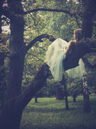 Dont be afraid - natalie in a tree. when will this happen hmmm well i have no fucking idea