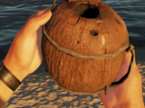 Coconut Flask