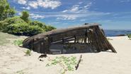 Survivor Remains 2