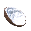 Coconut Food.png