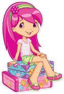 Suitcase raspberry