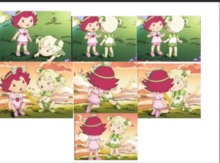 Baby Strawberry & Limelight 5