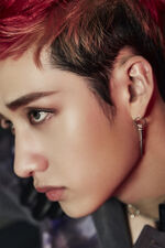 IN Life Bang Chan promotional photo 2