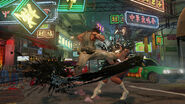 06 sf5images02
