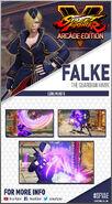 FalkeCard