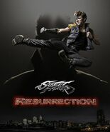 Street Fighter Resurrection Character Poster 1