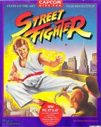 Street Fighter IBM PC
