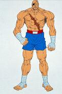 Complete File Street Fighter II-Sagat art