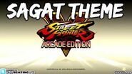 SFV ARCADE EDITION - Sagat Theme (full version)