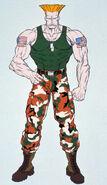 Complete File Street Fighter II-Guile art