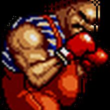 RockyBear.png