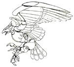Str optionC sketch