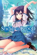 Light Novel Vol 17 EN