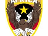 31st Joint Fighter Squadron Afrika