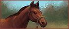 Horsemanship.png