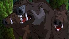 Boar clan.jpg
