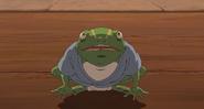 Aogaeru (1)