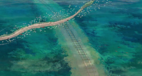 Shikigami following Haku