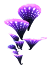 Glowing Coral Shelf Coral.png