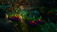Maroon Plant in-game