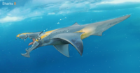 Brute Shark (BZ)