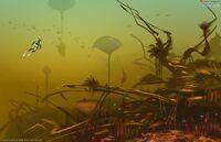 Lily pad islands 01