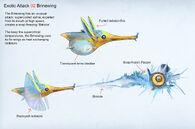 Exotic fish attack concept