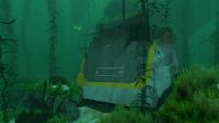 KelpWreck2