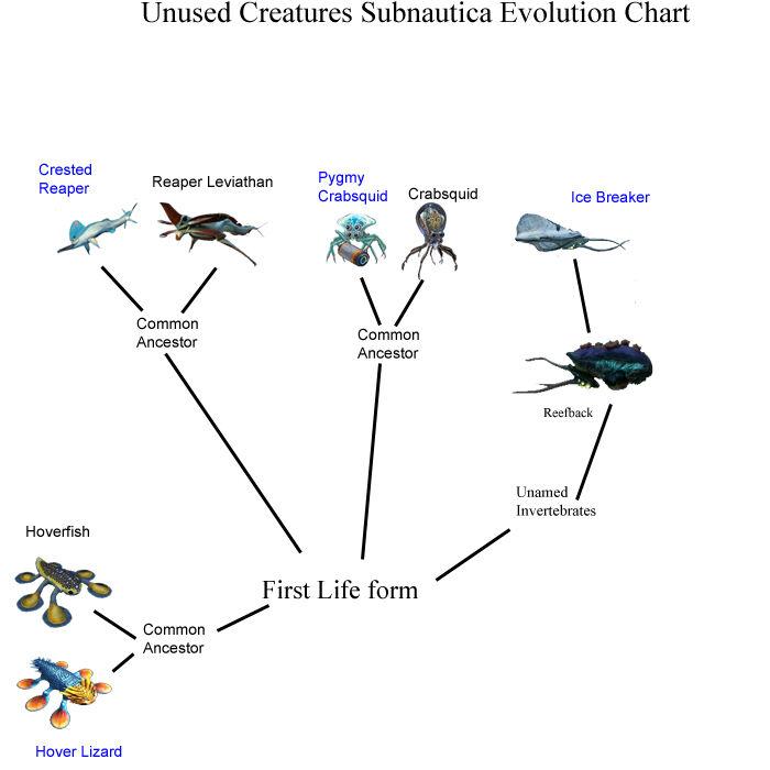Unused Subnautica creature evolution chart.jpg