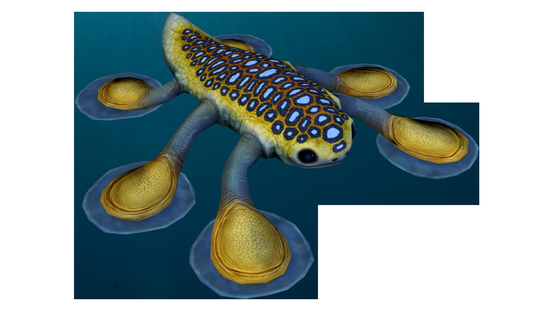 Hoverfish