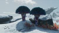 Rocket Island Trees
