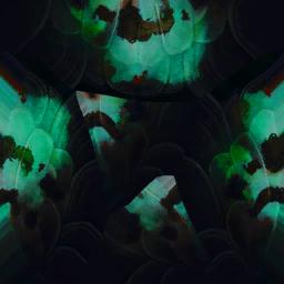 Creatures eggs 08 illum