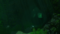 Kelp Forest Cave Entrance