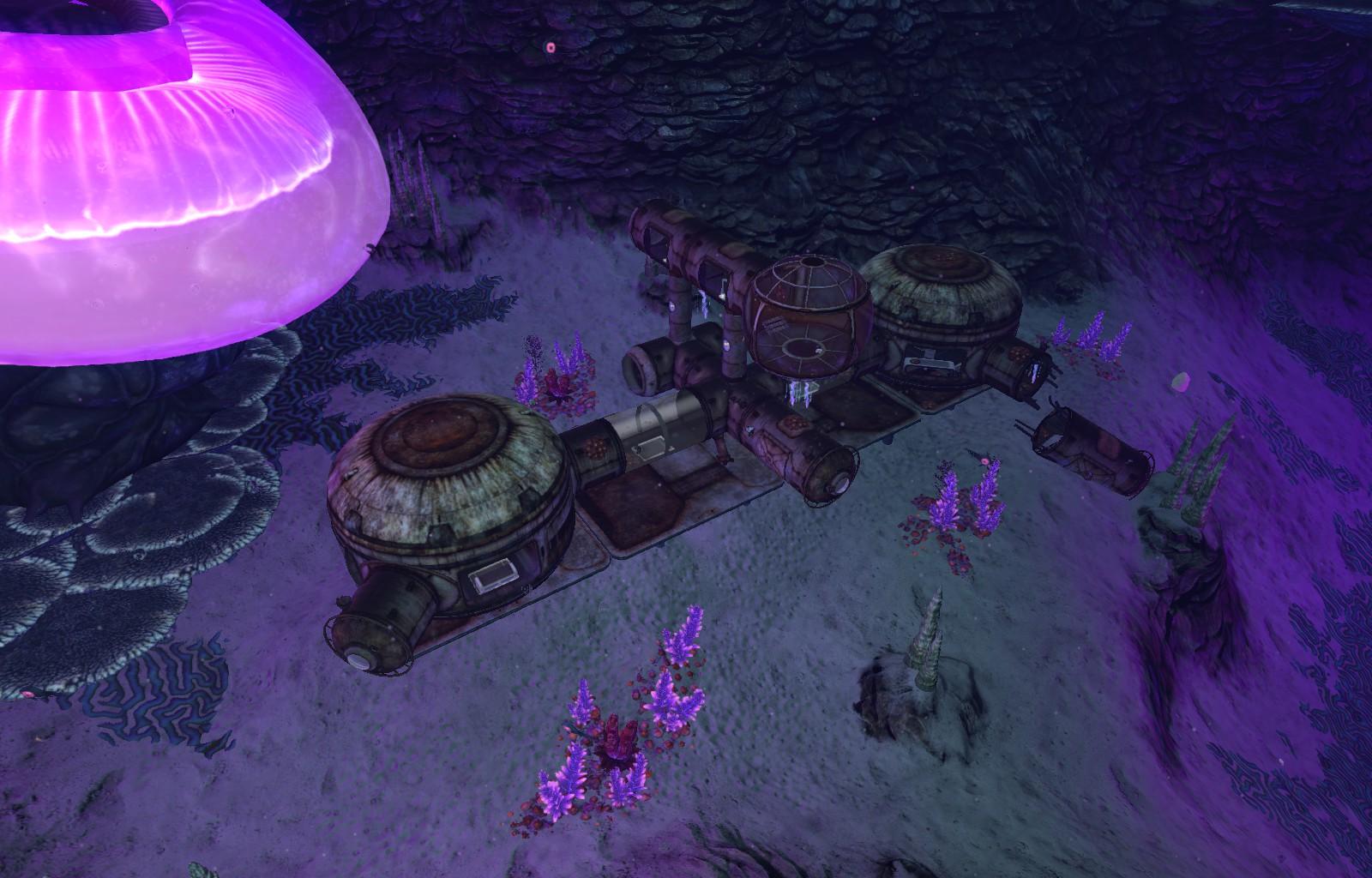 База Дегази Пещера медузных грибов