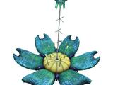 Кислородное растение