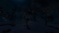 GlacialForest Night