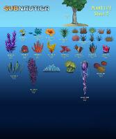 Flora List 2
