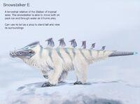 Snowstalker E