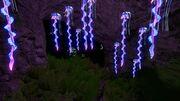 Kelp Forest Caves 01.jpg