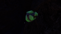 GR Caves Uraninite Crystal