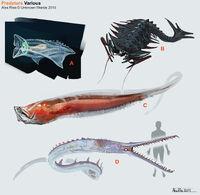 Alex-ries-alex-fauna-predators-misc