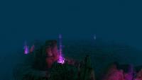PurpleVents Night