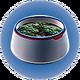 Горшок для растений 3.png