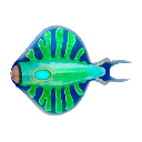 Discus Fish Icon.png