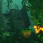 KelpForestWreck-1.jpg