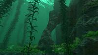 KelpRockFormation1