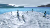Float Penguins
