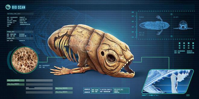 Fox3d-entertainment-giantfishskeleton.jpg